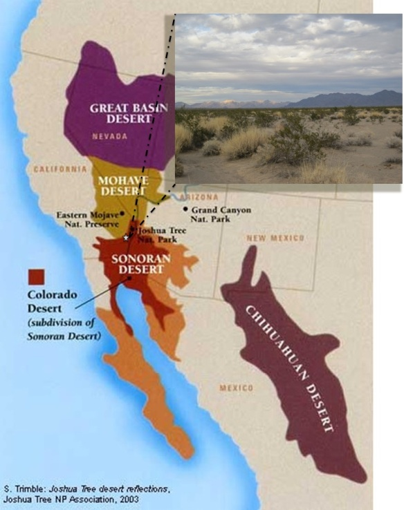 California's Colorado Desert. This desert is a subdivision of the larger Sonoran Desert that encompasses Arizona, southeastern California, most of the Baja California peninsula, the islands of the Gulf of California, and much of the state of Sonora, Mexico. Map image courtesy of http://www.grabovrat.com.