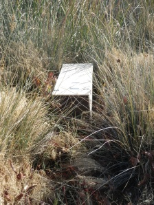 A track plate box used to record predator tracks