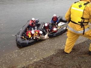 Sacramento Metropolitan Fire rescuing doe from the canal